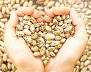 bean_heart